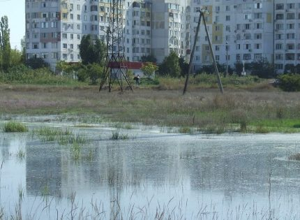 «Сколько времени мы будем дышать и травиться ядовитыми испарениями? Совесть у вас есть?», — жители оккупированного Крыма жалуются на образовавшиеся «фекальные озера» прямо посреди их домов. Кадры