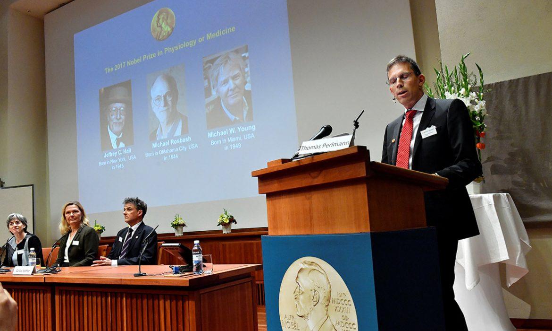 Названы ученые, получившие Нобелевскую премию по медицине: стало известно, сколько денег в этому году досталось лауреатам из США