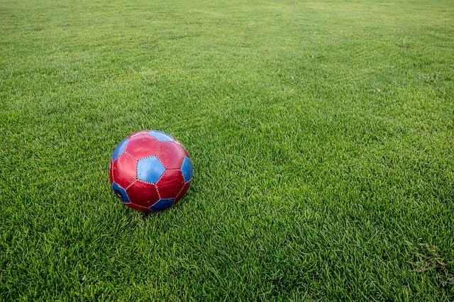 Эксперт предложил использовать букмекеров для развития национального футбола