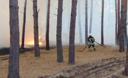 Эвакуируют людей: В трех районах Луганщины снова вспыхнули пожары (Видео)
