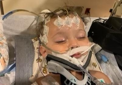 Умерший 11-месячный племянник Шэрон Стоун стал донором органов для троих человек