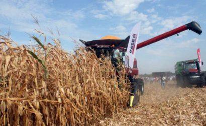 С приходом деятеля из «ДНР»: Фермеры Луганщины просят у президента защиты от рейдеров