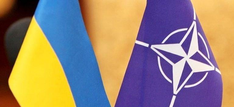 Эксперт рассказал, чем полезна Украина для НАТО