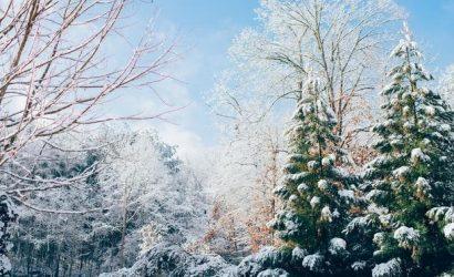 Февраль в Киеве оказался необычайно снежным и холодным