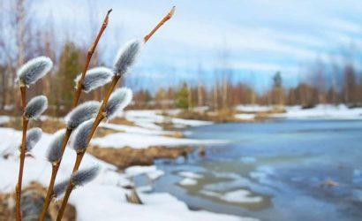 Самым теплым первый день весны будет на Закарпатье