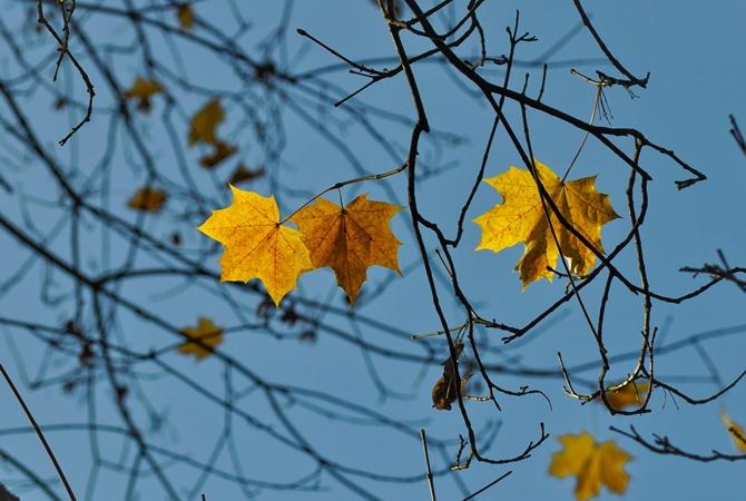 Какой будет погода в Украине 28 октября