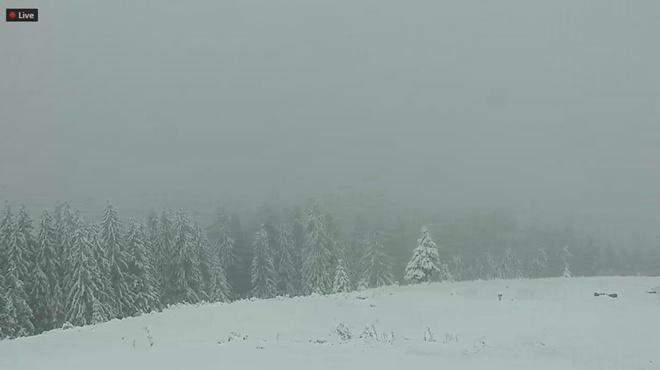 Первыми пострадавшими от снега на украинских горнолыжных курортах стали киевляне