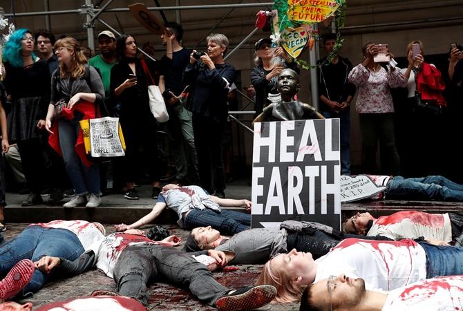 Борцы за экологию устроили всемирный протест: кто они такие и чего хотят