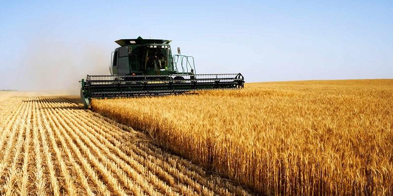 Украина обогнала Китай по экспорту сельхоз продукции в ЕС