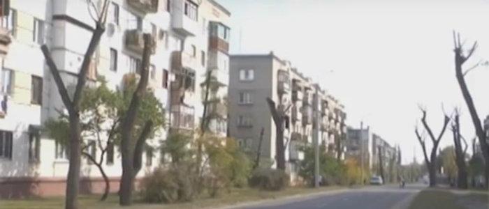 В Северодонецке коммунальщики кронируют деревья: Горожане возмущены (Видео)