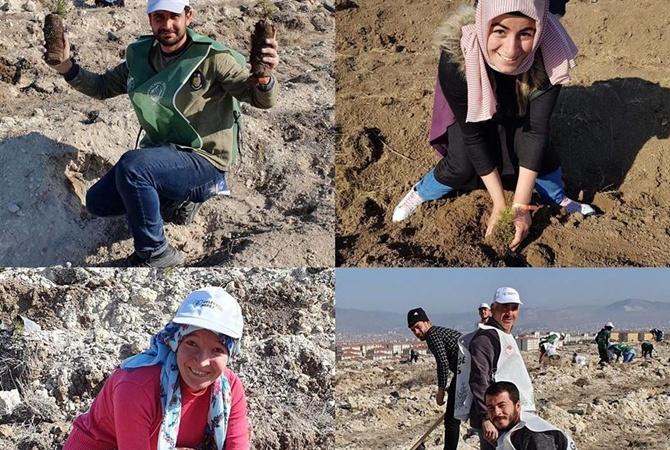 11.11 в Турции высадили 11 миллионов деревьев