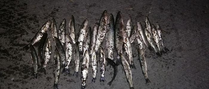 На реке Кальмиус разоблачен нарушитель, который нанес 21 тысячу убытков