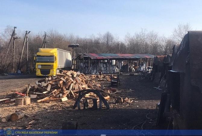 Житомирские дельцы экспортировали леса на 14 миллионов, харьковские — вырубили на 21 миллион