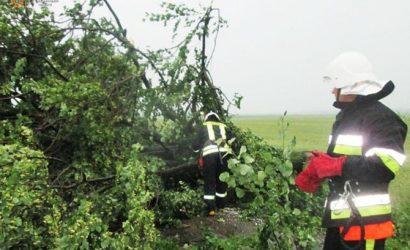 Непогода обрушилась на две области Украины: обесточен 71 населенный пункт