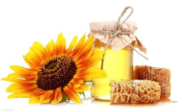 Ученые назвали самый целебный мед в Украине