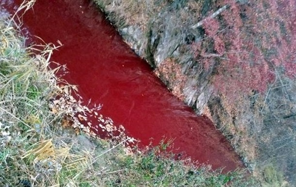 Река в Южной Корее покраснела из-за крови убитых свиней