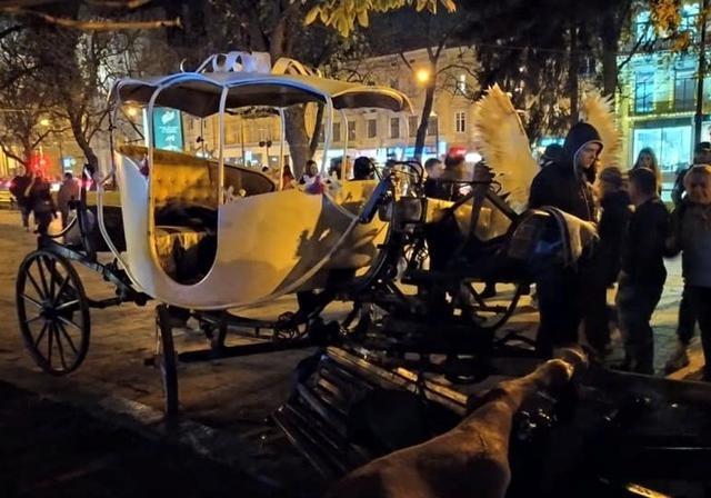 Запрет отменен: конные кареты вернулись на улицы Львова