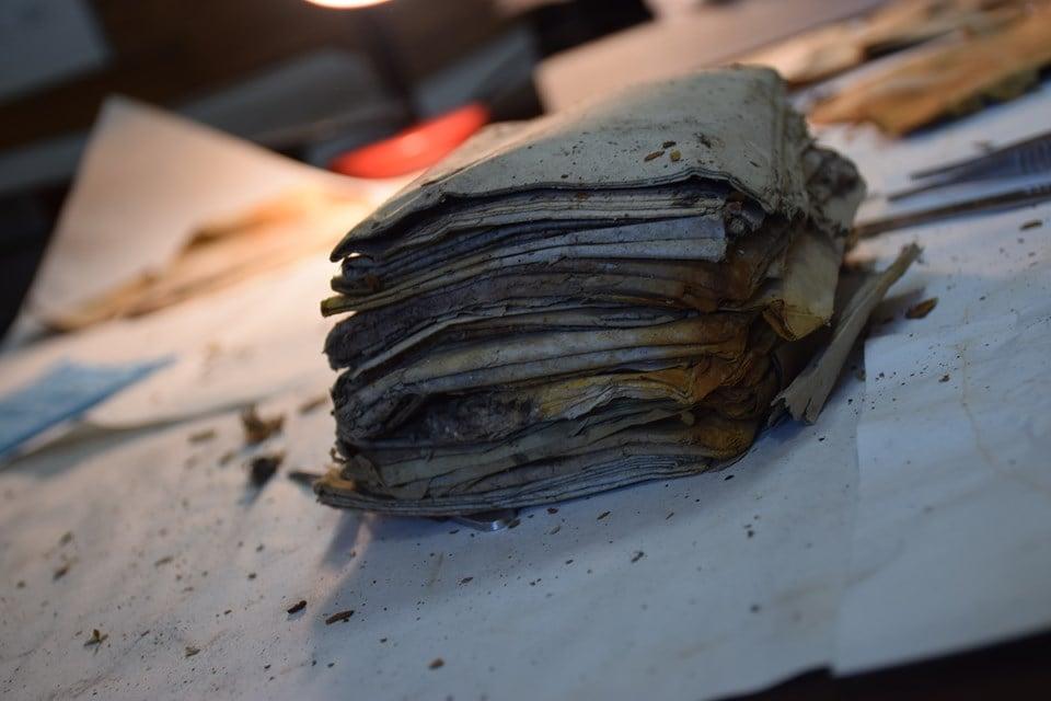 В лесах Прикарпатья нашли документы УПА