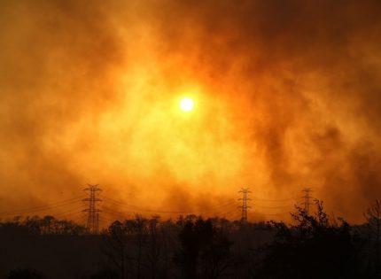 МИД прорабатывает план эвакуации украинцев из Турции, которую охватили лесные пожары