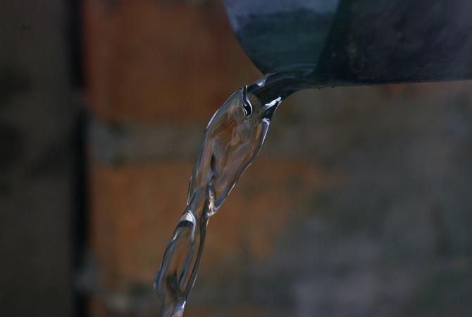 Чудо природы: в Каменском из дерева льется вода