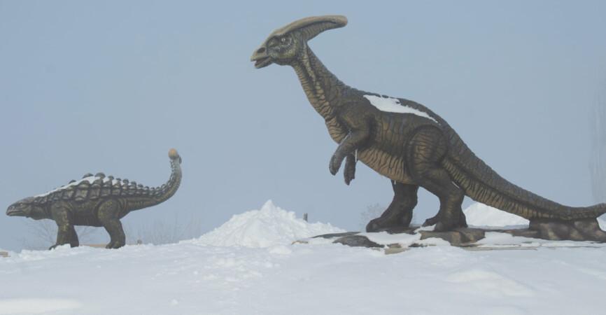 Мороз –30: На Донетчине показали заснеженный и полностью заледеневший «Клебан-Бык» (Фото, видео)