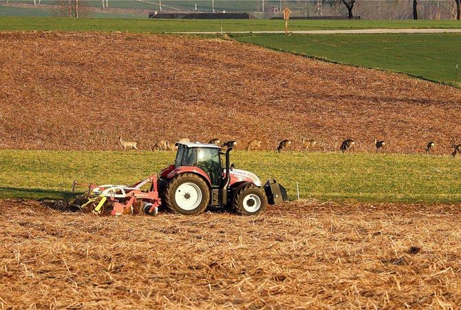 Главные риски открытия рынка земли