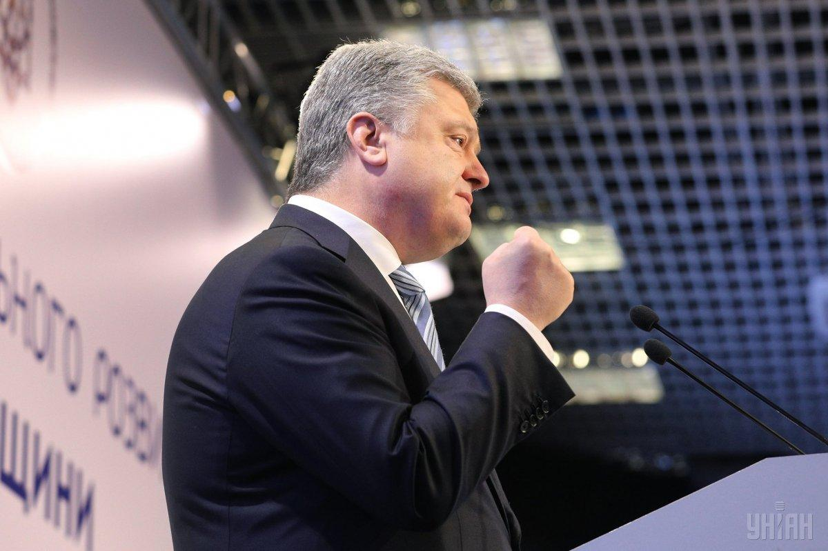 Федина: Кремль преследует Порошенко