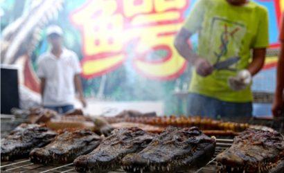 Украинцы будут кушать крокодиловое мясо, а южноафриканцы — свинину: страны обсудили сотрудничество