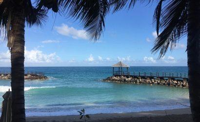 С марта начнется безвиз Украины с Гренадой, а Грузия будет принимать наших туристов