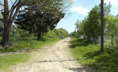 «Бермудский треугольник» на Волыни: летом замерзает почва, а из-под земли раздается звон