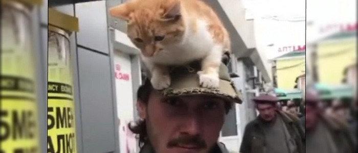 В «ДНР»: В Донецке мужчина ходит по улице с котом на голове (Фото)