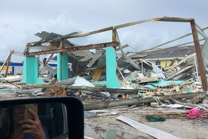 На Багамах после урагана «Дориан» нашли собаку, которая месяц жила без еды