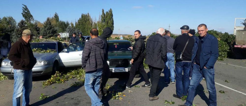 В «ДНР»: В районе КПП «Успенка» спиленные ветви деревьев рухнули на автомобили (Фото)