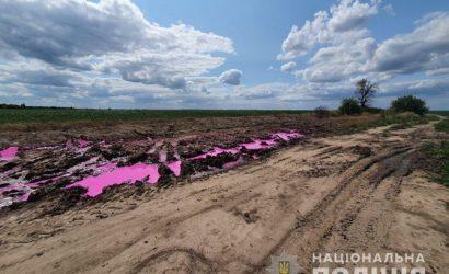 Полиция Ровенщины открыла уголовное дело из-за ядовитых розовых луж