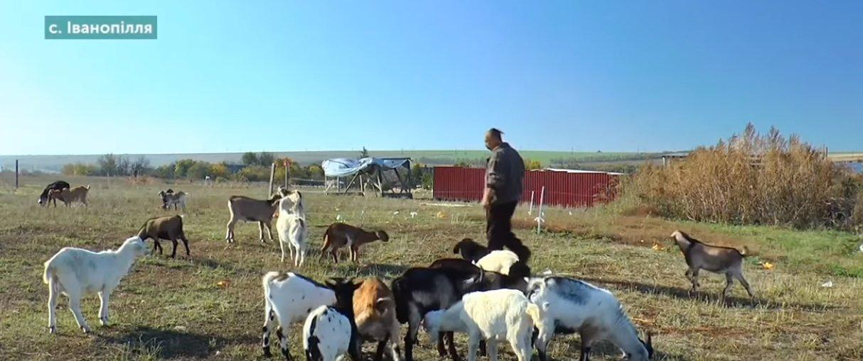 На Донетчине бывший военный планирует производить колбасу (Фото)
